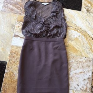 Ann Taylor LOFT sexy taupe fitted/sheer w/Camisole